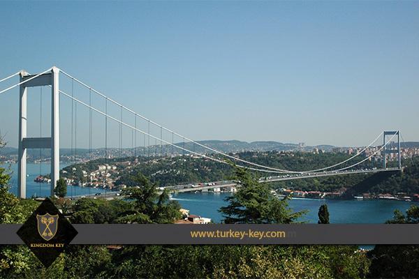 جسر عملاق